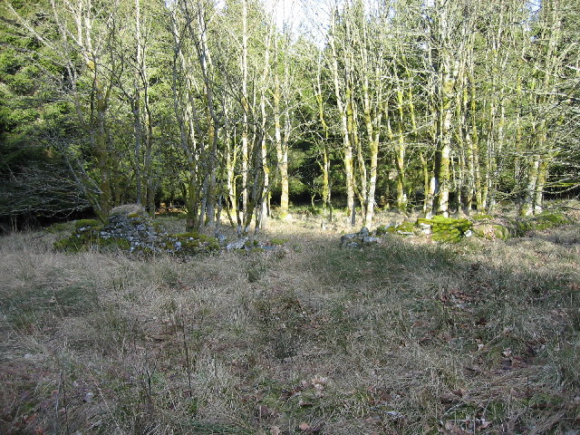 Moneyrees Stell (remains), Wark Forest
