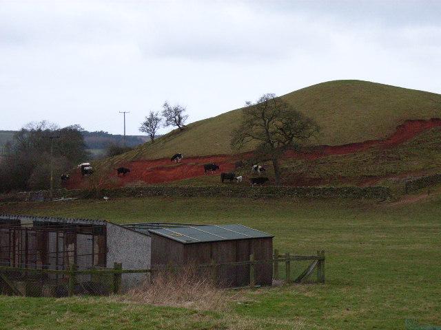 Hillock at Newbiggin