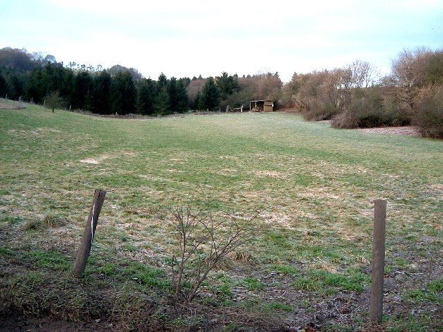 Pasture land near White Hill