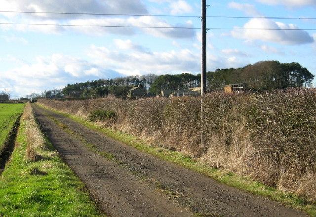 Road to North Trewick Farm