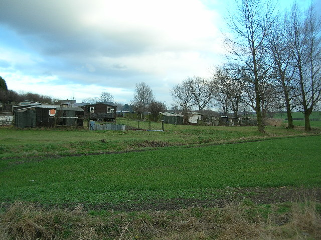 Cutsyke allotments