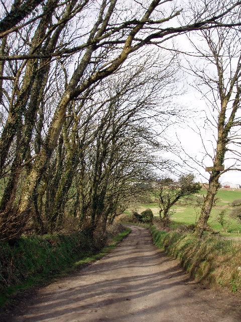 Lane to Bosence Farm