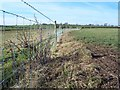 NY2653 : Fenced Footpath. by John Holmes