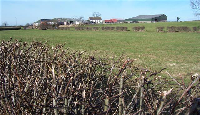New Bampton Farm.