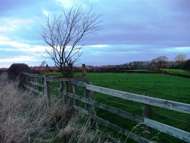Fence Near Manor House Farm