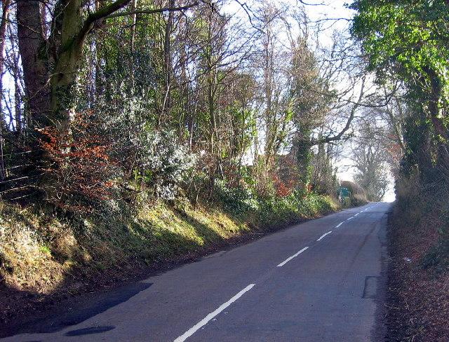 Road near Clay House