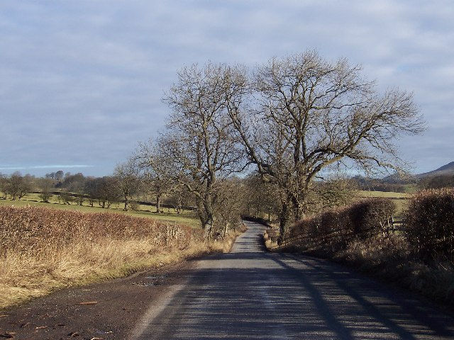 Lane between Hetton and Flasby