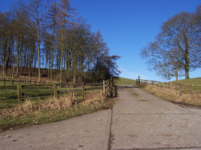 Access Track by Great Wood