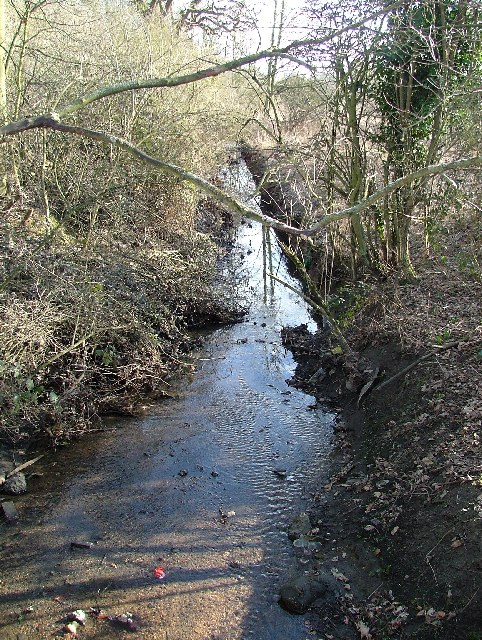 Stevenage Brook near Oaks Cross farm