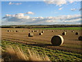 NZ1385 : Field of round straw bales by Alan Fearon