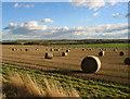 NZ1385 : Field of round straw bales by Alan Fearon