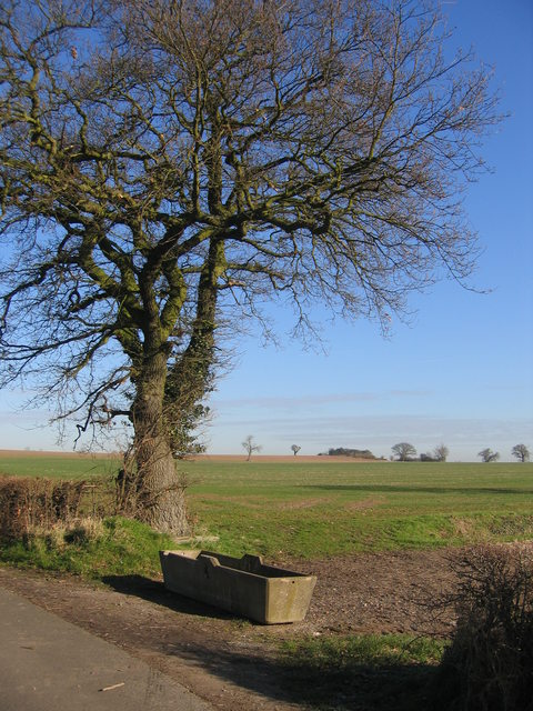 View towards Copdock Hill