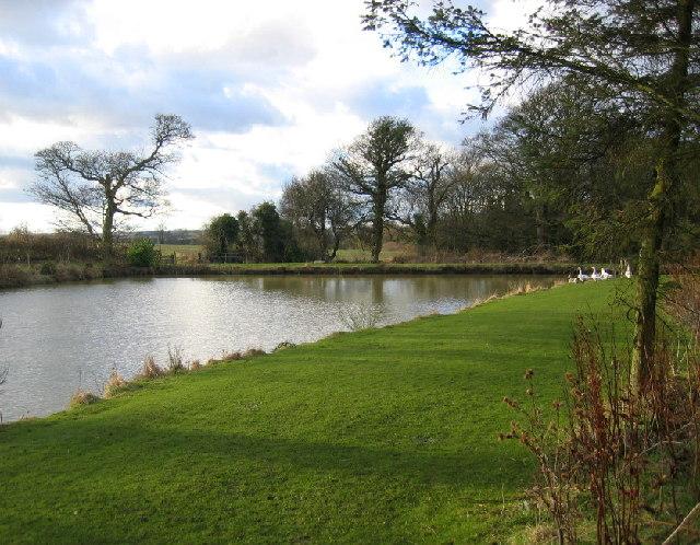 Duck Pond, Mitford Steads Farm