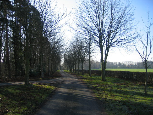 Driveway to Meer Hill