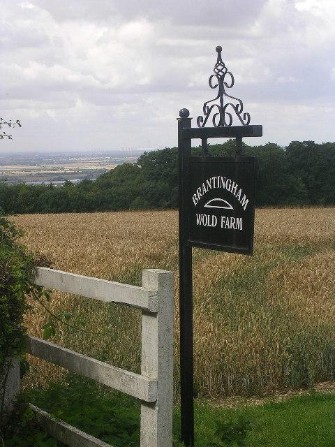 Brantingham Wold