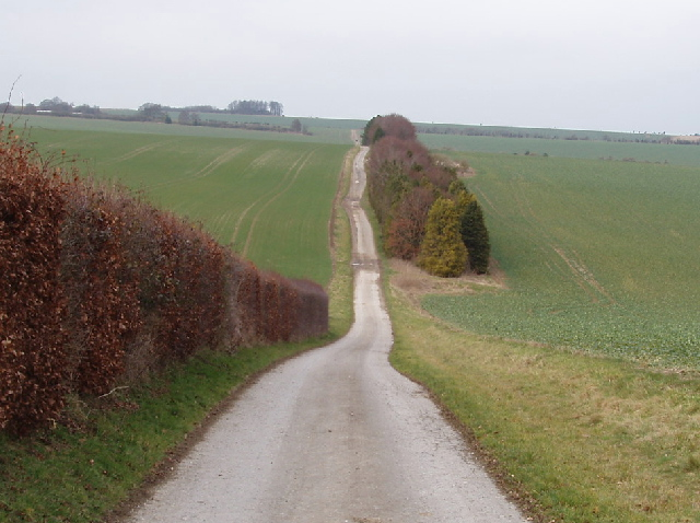 Bridleway over the downs, Fisherton de la Mere