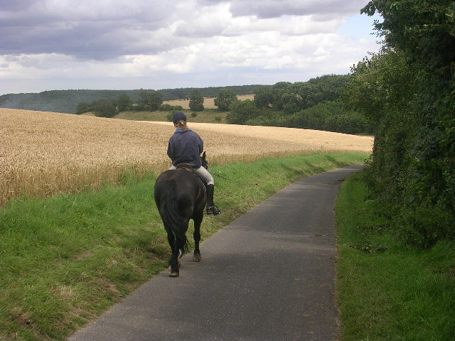 Wolds Way, approaching Huggate