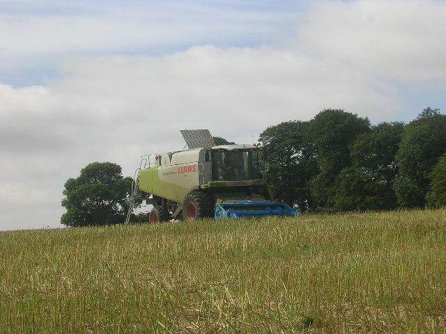 Near Gill's Farm, above Thixendale
