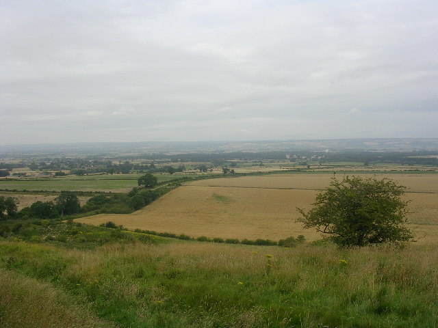 View from South Wold Plantation towards Wintringham