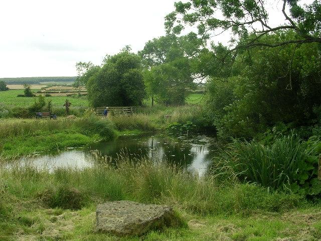 Wintringham Millennium Pond