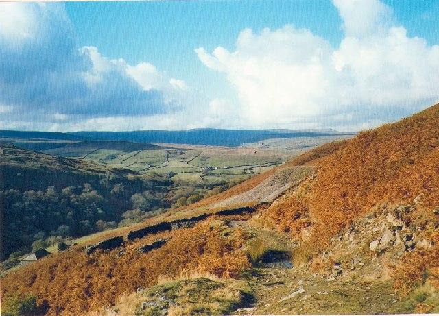 The Coast to Coast path near Crackpot, Swaledale.
