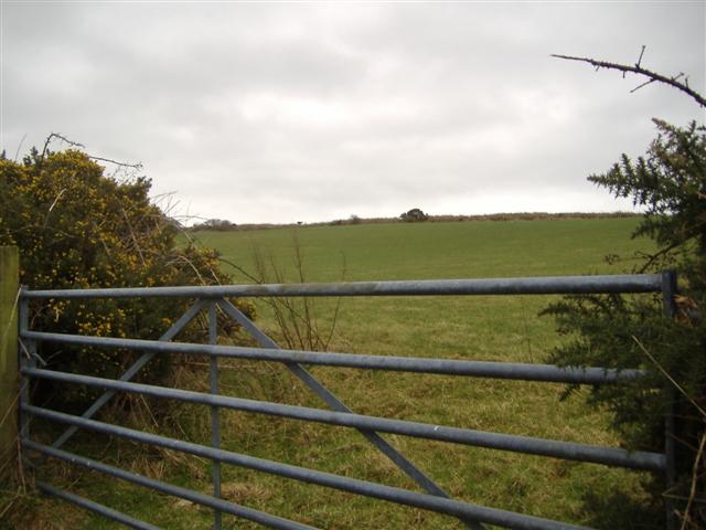 Farmland at Ballagick