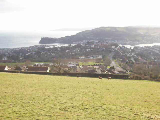 Holcombe Down with view to Teignmouth