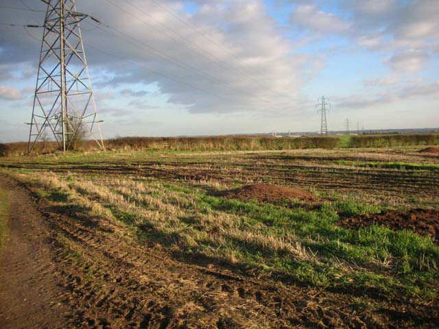 Tractor Wheelings and Pylon Line