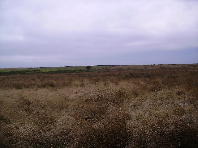 Goodber Common