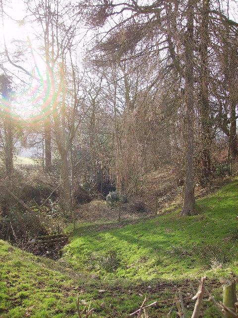 Wood Fairheath Road