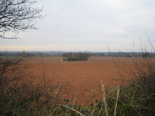 Farmland near Maxstoke