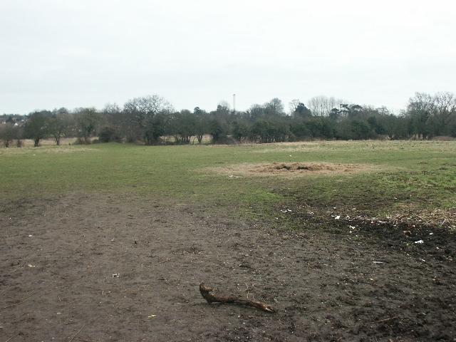 Fields, Costessey
