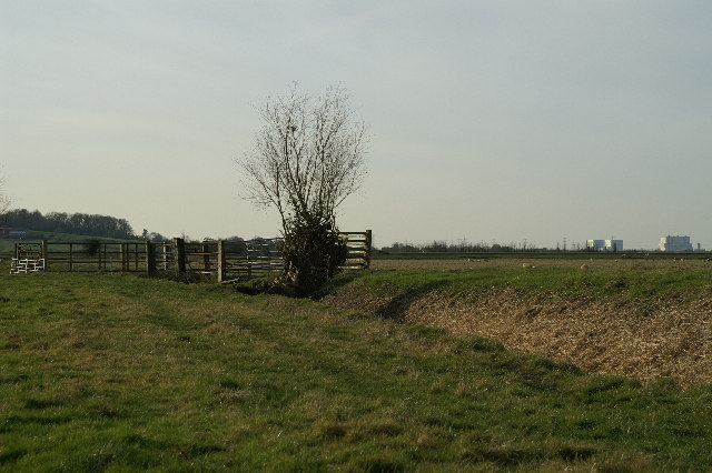 Pawlett Hams, looking to Hinkley Point Power Stations
