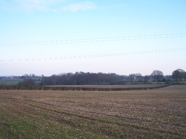 Footpath to Tipton Hall