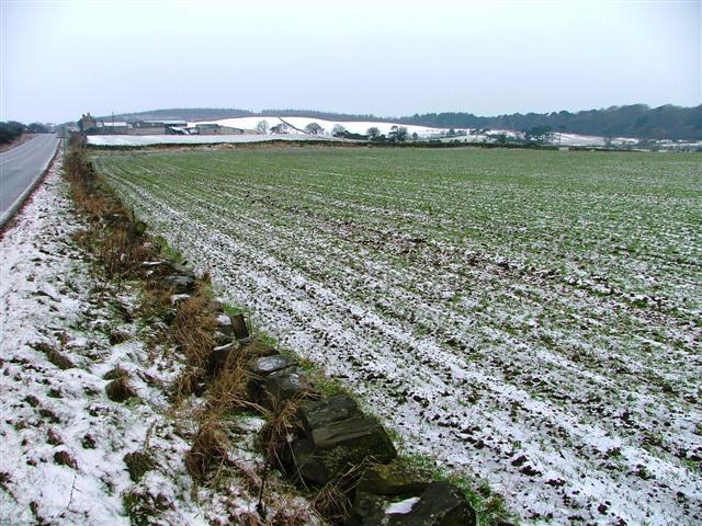 Arable Field at Skelder Hill Farm