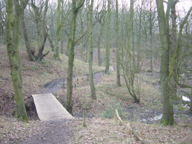 Footbridge, Goyt Valley  near Carr Mill Dam