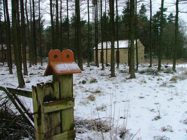 Wireless Station, Hutton Mulgrave Woods