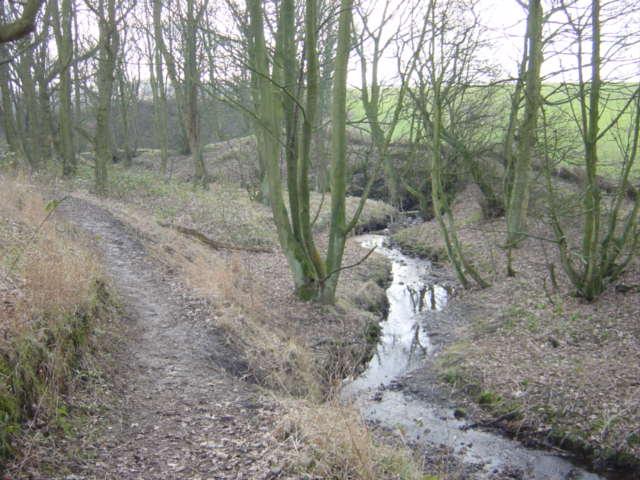 The Goyt near Carr Mill Dam