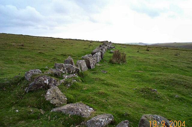 Reaves at Hen Tor Warren - Dartmoor