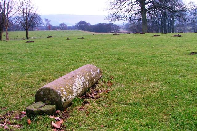 Disused Lawn Roller, The Moors Centre