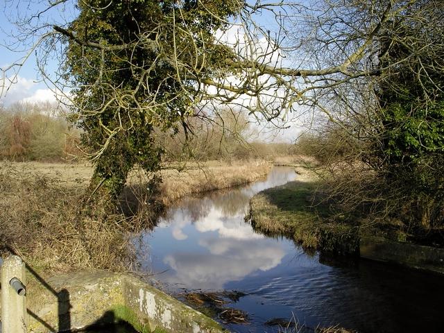Side channel of River Test near Longstock