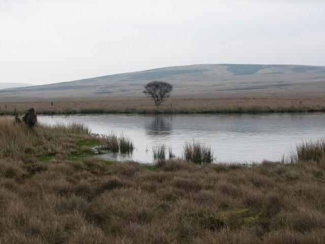 Crane Loch