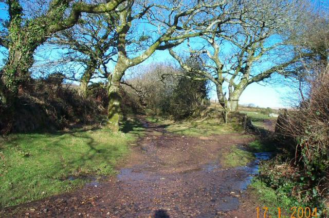 East Rook Gate - Dartmoor