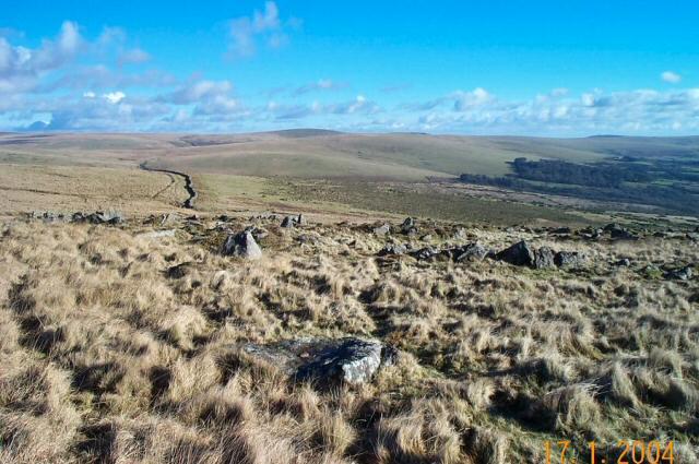 Penn Moor - Dartmoor