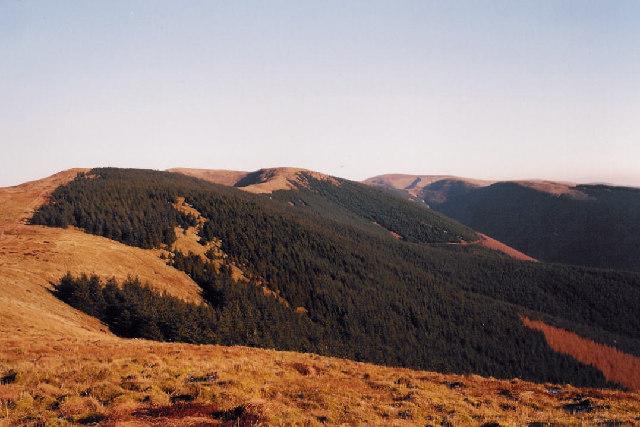 Dyfi Fforest hills