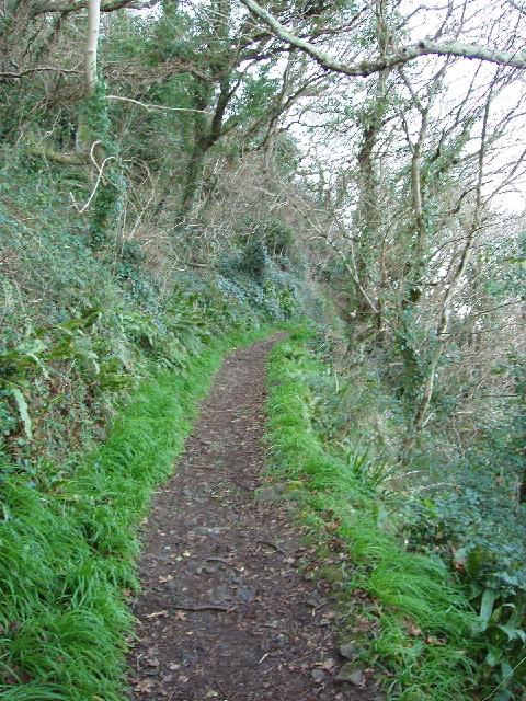 Bishop's Walk at Black Head, Torquay