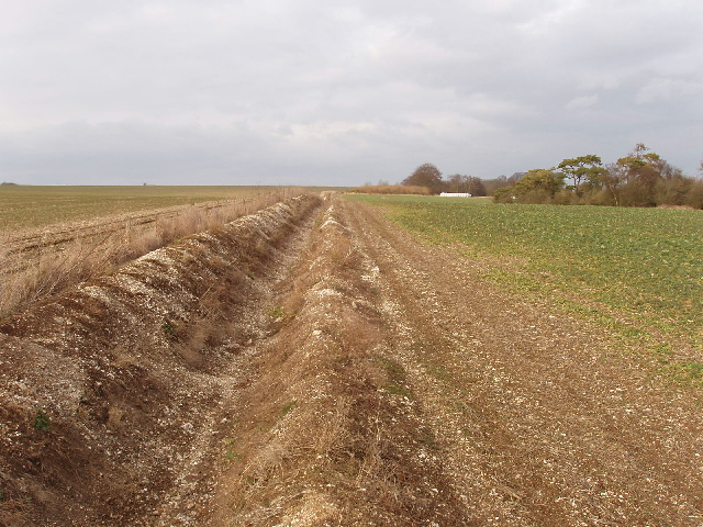 Ditch beside East Codford Down