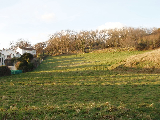 Field by Bishop's walk, Black Head, Torquay