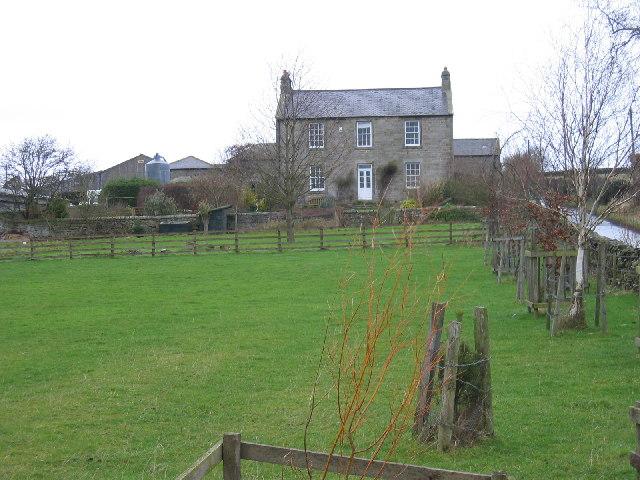 Codlaw Dene, near Acomb
