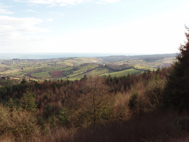 View over fields and woods south-east from Mamhead Point